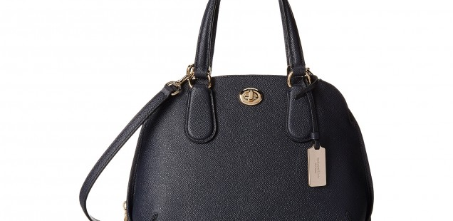 Price Comparison: Coach Satchel and Wallet