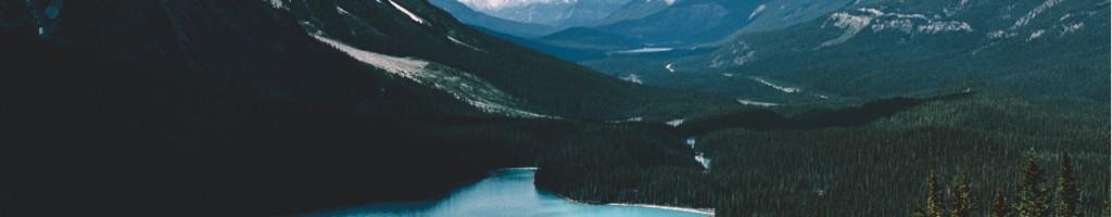 Top Fold Canada