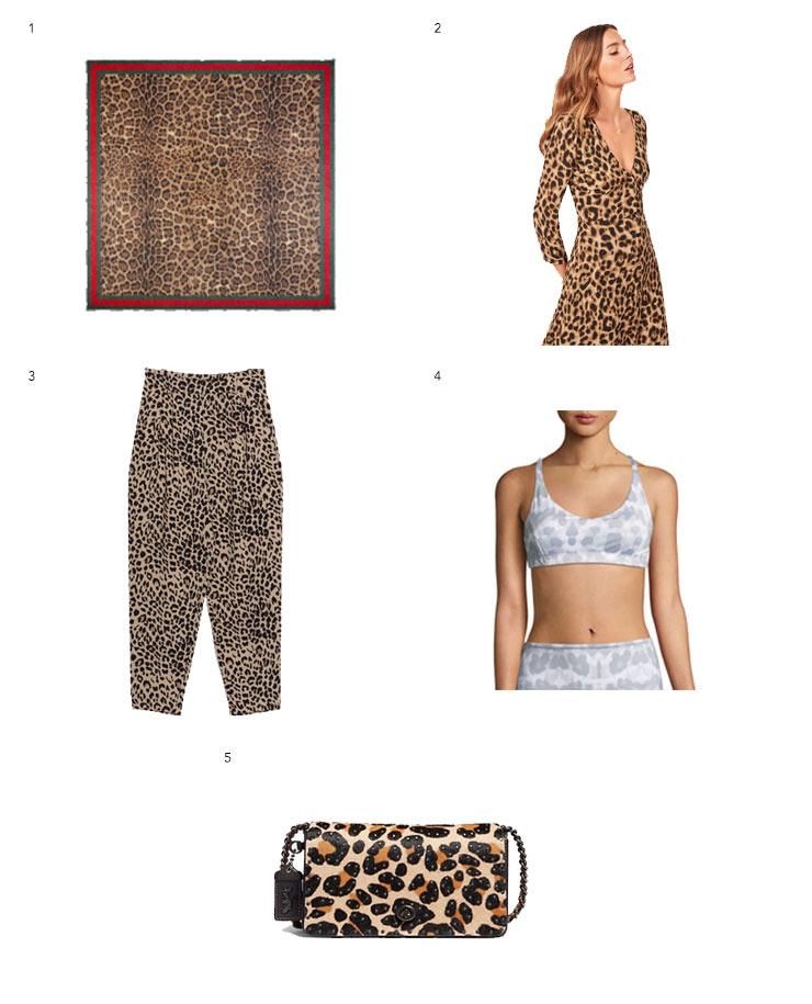 Leopard-Print-1